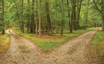 Path diverged